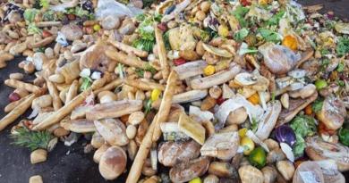 Buttiamo ancora troppo cibo nella spazzatura. L'approfondimento di nuovigiorni.net